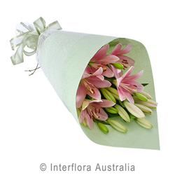 Pink Asiatic Lilies Wrapped Flower