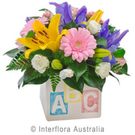 Buy My First Abc Flowers in Brisbane