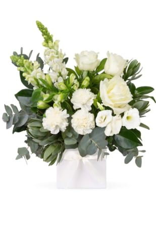 Buy Serenity Flowers, Delivered in Brisbane